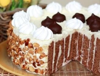 Торт «Бисквитно-шоколадный с заварным кремом, смородиновым желе и миндальной нугой»